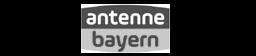 referenz-antenne